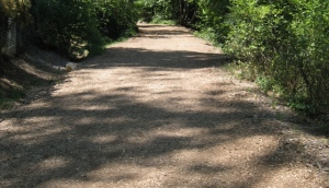 The walkabout path